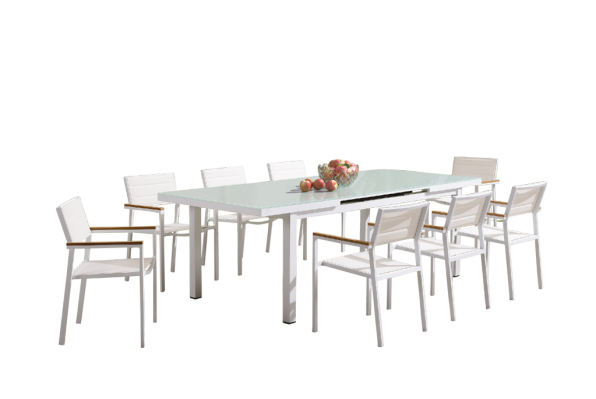 Snow Dining Set x8